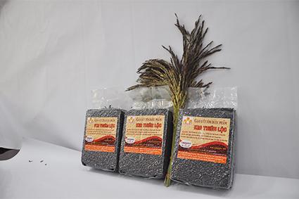 Gạo Lức Tím Organic (ST)