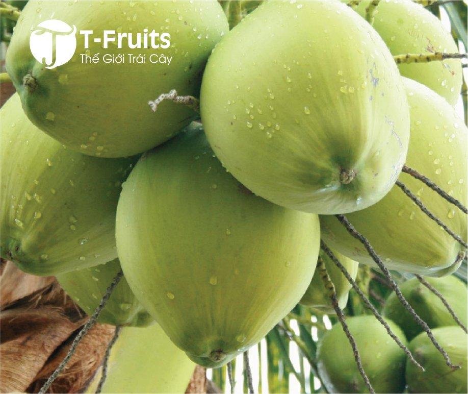 Dừa xiêm xanh (15K/trái)