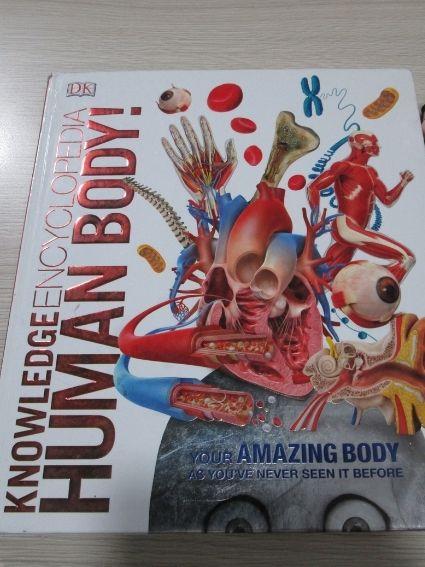 Human Body - Knowledge Encyclopedia (Bìa cứng)