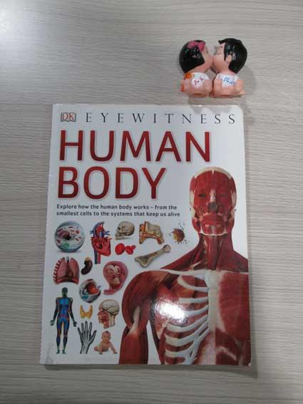 Human Body - Eye witness (Bìa mềm)